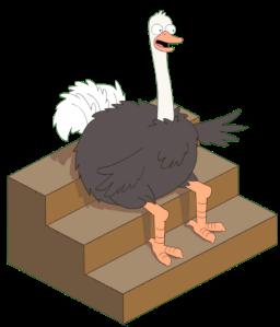 Live Studio Ostrich