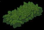 unrulybush