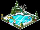 Skate Pond