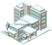 Snowy Hospital