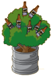 Beer Bottle Bush