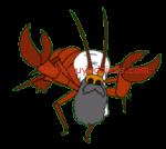 Iraq Lobster 2