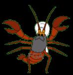 Iraq Lobster