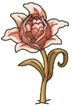 Pod Plant