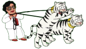Kingpin Consuela Walk the White Tigers 1