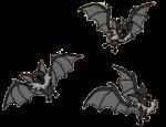 Flock of Bats 1